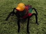 SpiderDuck
